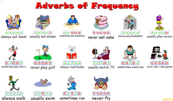 Adverbs of Frequency Drawings, please right-click, Save As... to store locally